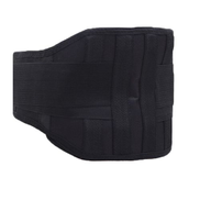Generic Double Banded Back Waist Support Belt Lumbar Pain Ache Relief Brace Adjustable Tourmaline Product Self Heating Magnets Therapy Black WTS
